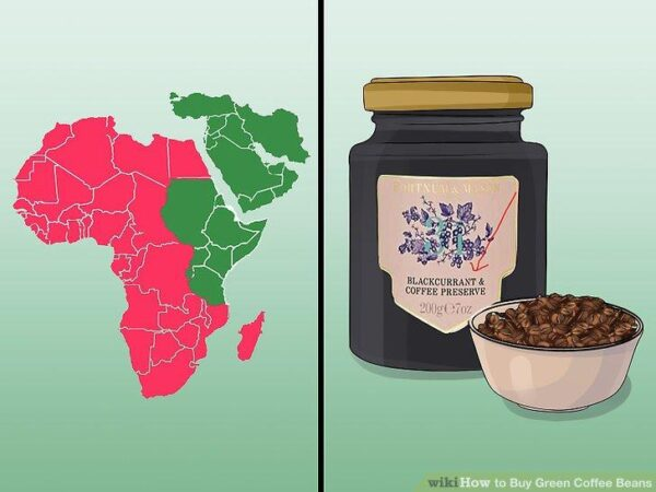 دان سبز قهوه آفریقا