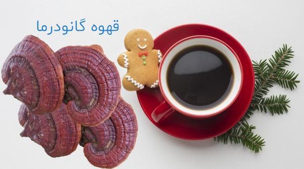 قهوه گانودرما چیست