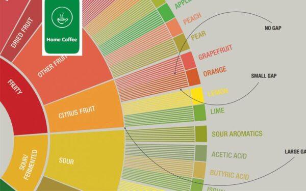 فاصل بین طعم ها چرخ طعم قهوه