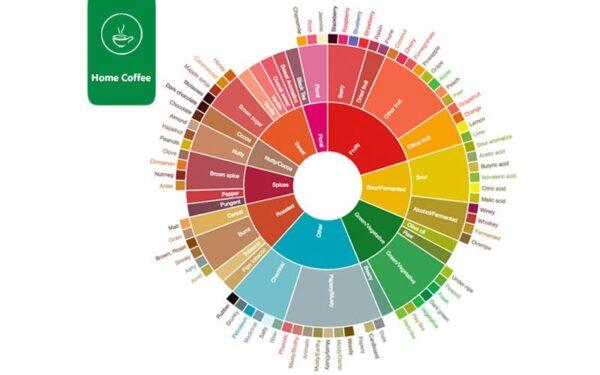 رنگ ها در چرخ طعم قهوه
