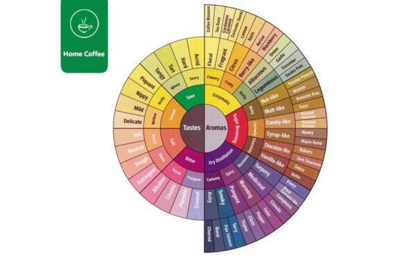 مرکز چرخه طعمی قهوه