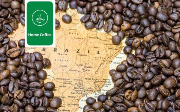 برزیل تولید کننده قهوه