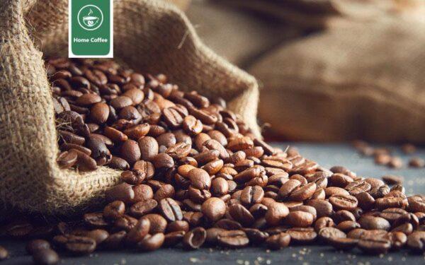 تولید قهوه در هند