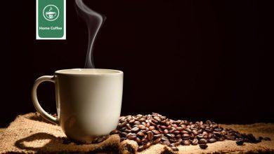 Photo of قهوه هند : ویژگیها و تاریخچه قهوه در هند