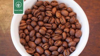 Photo of قهوه پی بری ( Peaberry Coffee ) چیست و چه ویژگی هایی دارد